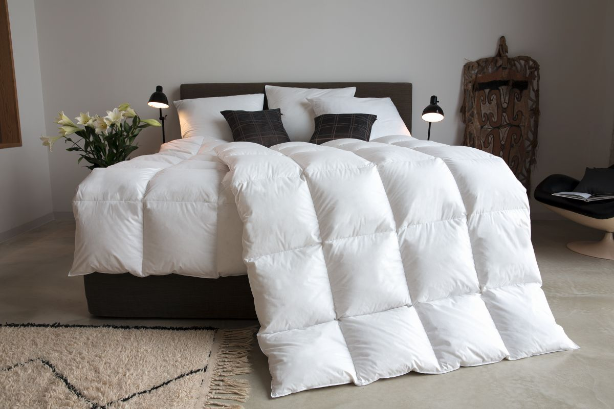 centa star daunendecke ambiente exclusiv daunendecken decken tinas bettenladen. Black Bedroom Furniture Sets. Home Design Ideas